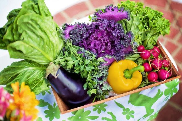 jardiner son jardin pour planter fruit et legume airnounou