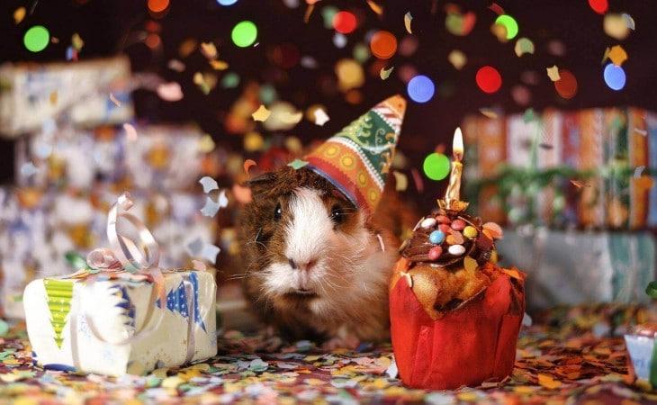 Bien organiser la fête d'anniversaire de votre enfant